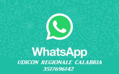 Nasce il numero Whatsapp Regionale Calabria