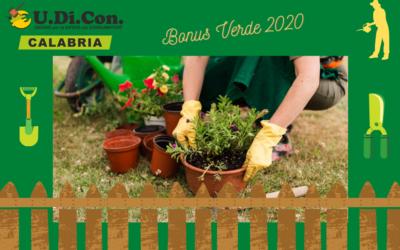 Bonus Verde 2020: una guida per tutti!